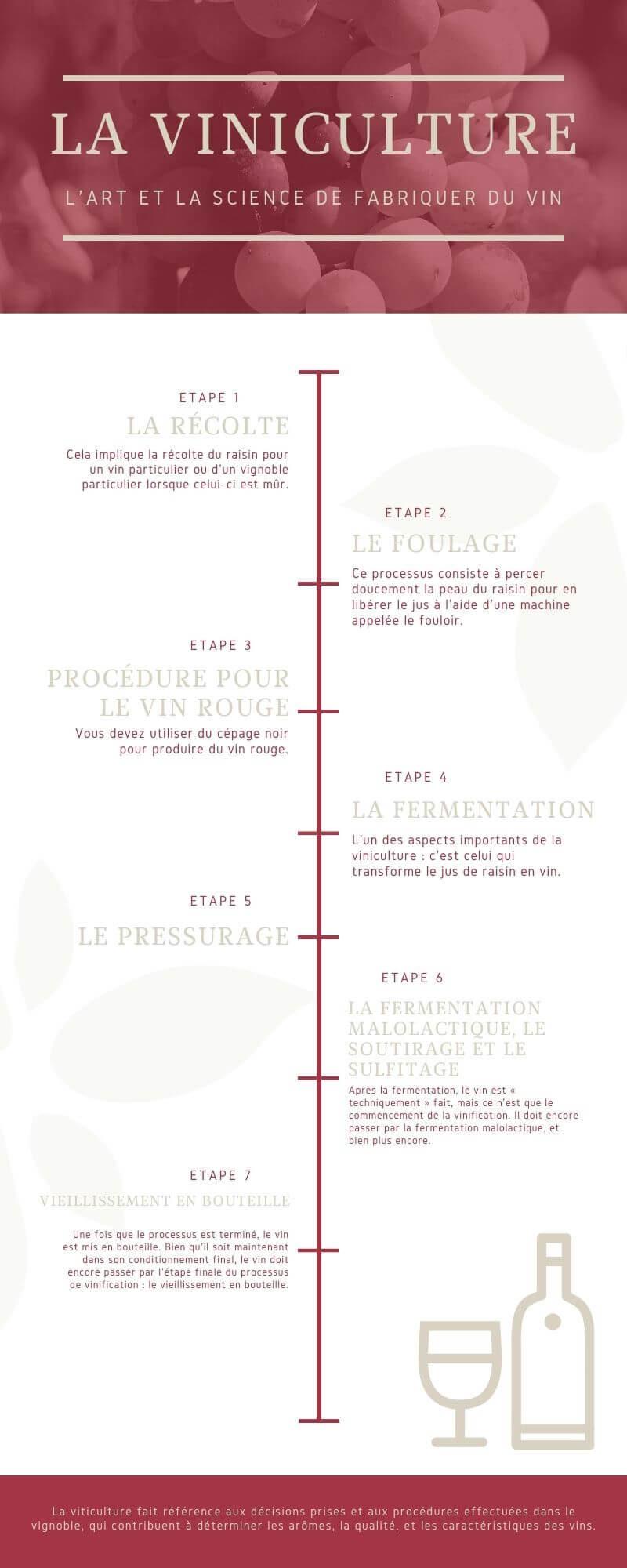 infographie viniculture bordeaux